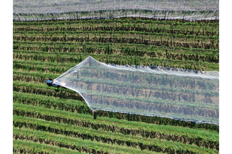 Cordes et filets pour agriculture, élagage et élevage