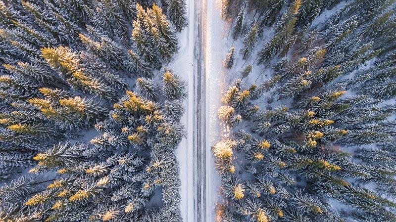 Forêt de pins en Norvège sous la neige vue du ciel